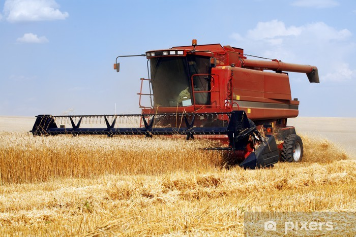 Vinylová fototapeta Kombajn v oblasti zlata pšenice proti modré obloze - Vinylová fototapeta