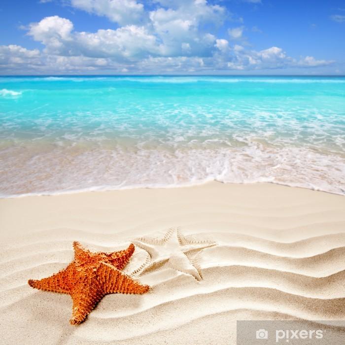 caribbean tropical beach white sand starfish shell Vinyl Wall Mural - Themes