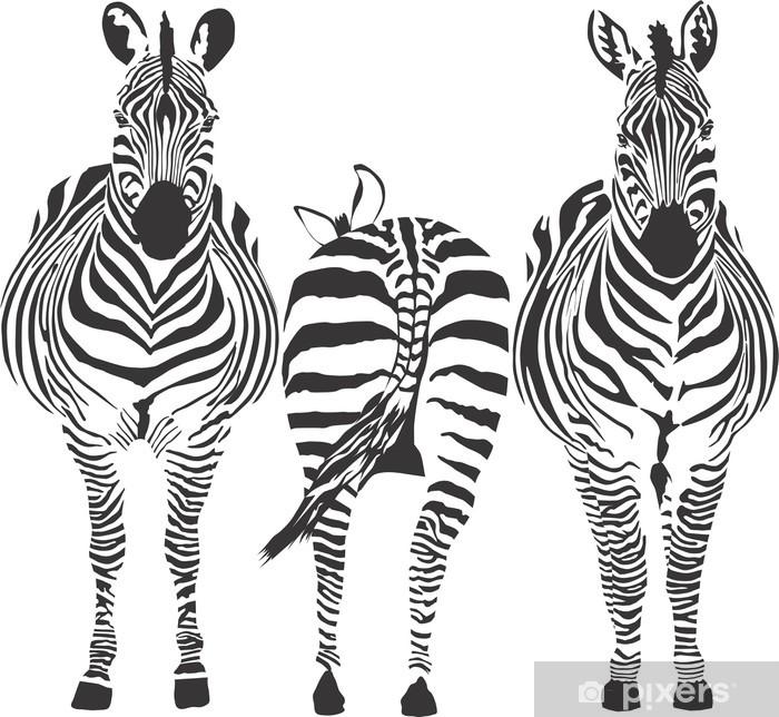 Zebras Framed Poster - Africa