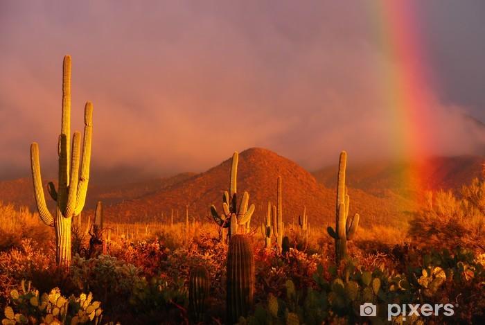 Vinyl Fotobehang Rainbow zonsondergang bij de Saguaro National Park, Arizona, Verenigde Staten - Woestijn