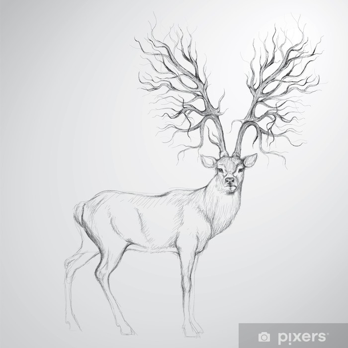 Deer with Antler like tree / Realistic sketch Vinyl Wall Mural - Themes