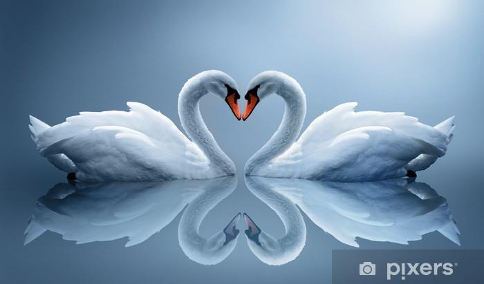 Papier peint vinyle Swans - Cygnes