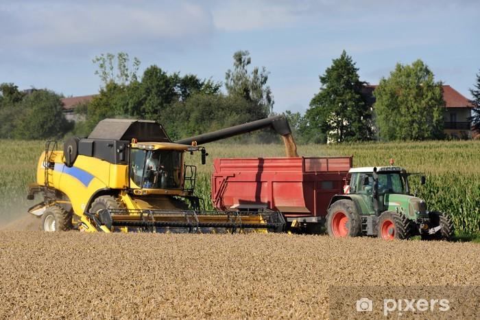 Fotomural Estándar Cosechadora descarga - Agricultura