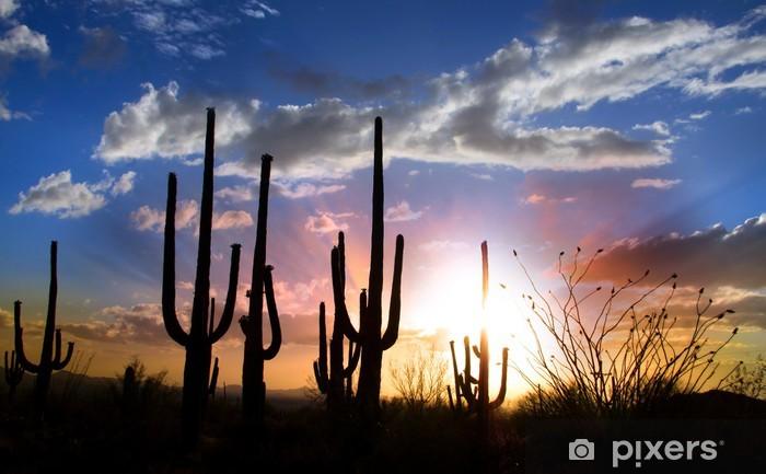 Fototapeta winylowa Sun set i Saguaro kaktus w Saguaro National Park - Niebo