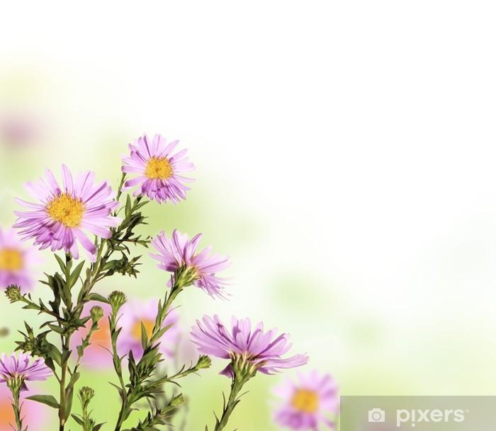 Naklejka Pixerstick Piękny kwiat tle z wolnego miejsca na tekst - Kwiaty