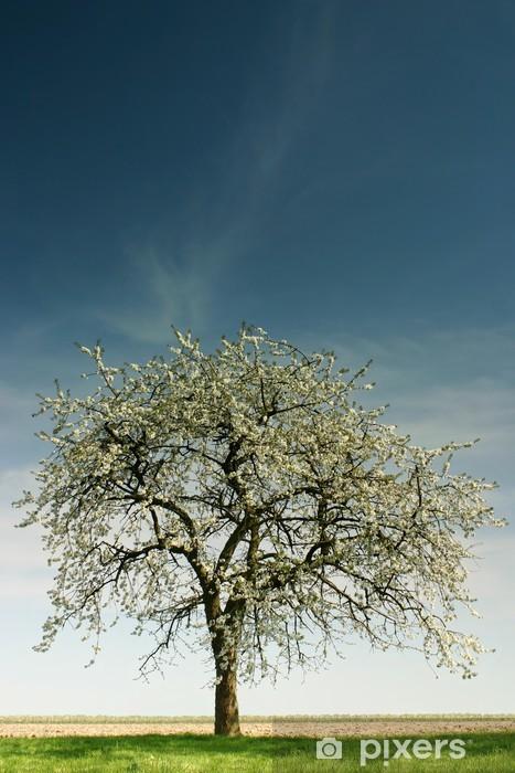 single apple tree Pixerstick Sticker - Trees