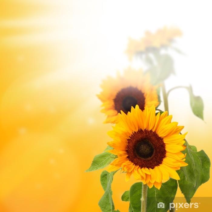 Fototapeta winylowa Świeże kwiaty - Tematy