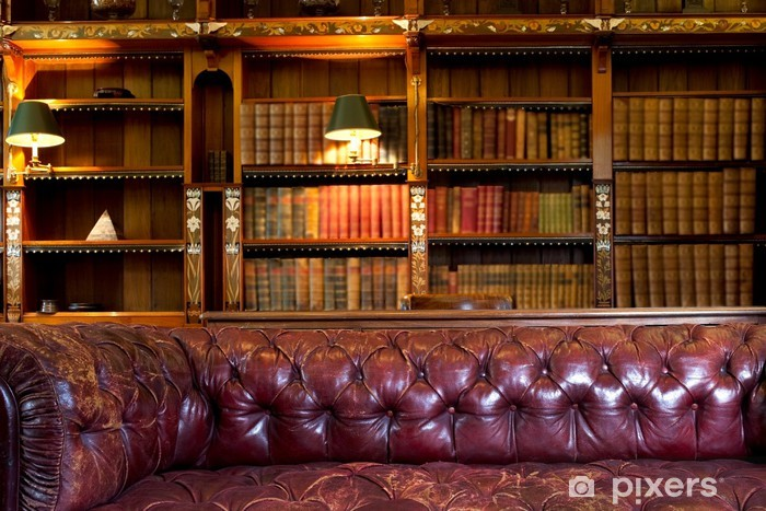 Leather Sofa And Retro Library Wall Mural   Vinyl