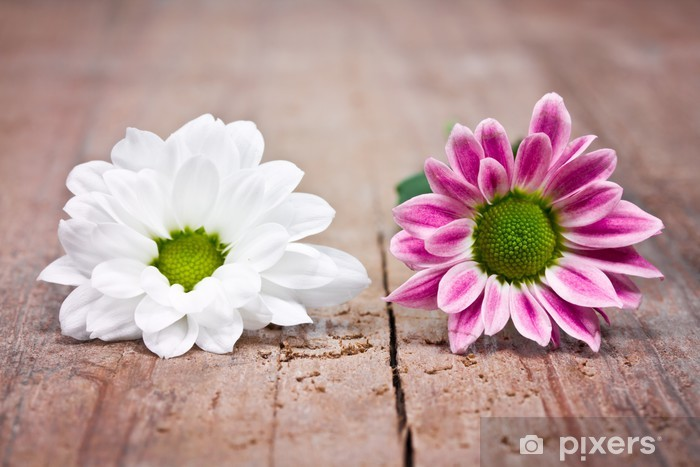 Sticker Pixerstick Deux fleurs - Fleurs