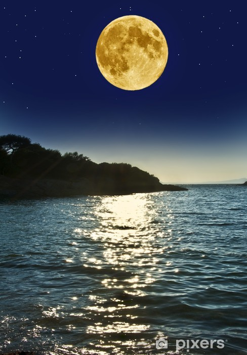 Night Scenery With The See And The Moon Wall Mural Pixers We Live To Change