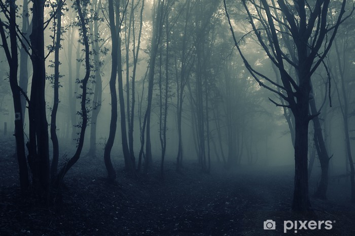Sticker Pixerstick Paysage forestier avec le brouillard - Thèmes