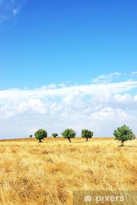 Fototapeta winylowa Pole w regionie Alentejo, Portugalia. - Europa