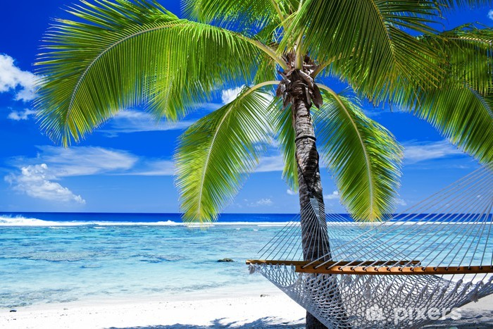 Fototapeta winylowa Pusty hamak między palmami - Palmy