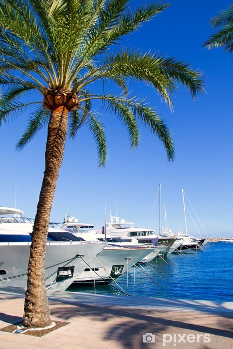 Vinyl-Fototapete Calvia Puerto Portals Nous Luxus-Yachten auf Mallorca - Europa