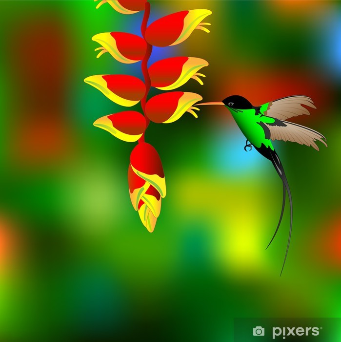 Flower with colibri. Pixerstick Sticker - Birds