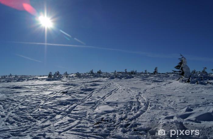 Naklejka Pixerstick Górska łąka zimą - Pory roku
