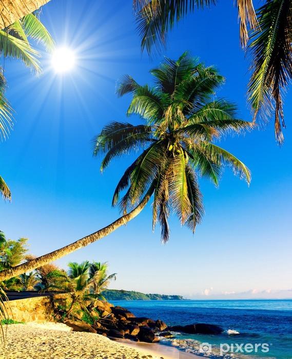 Papier Peint Tropical Mer Paradisiaque Fond D Ecran Pixers Nous Vivons Pour Changer