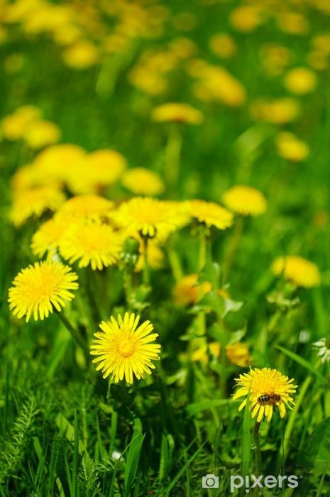 Naklejka Pixerstick Bee & dandelion - Kwiaty