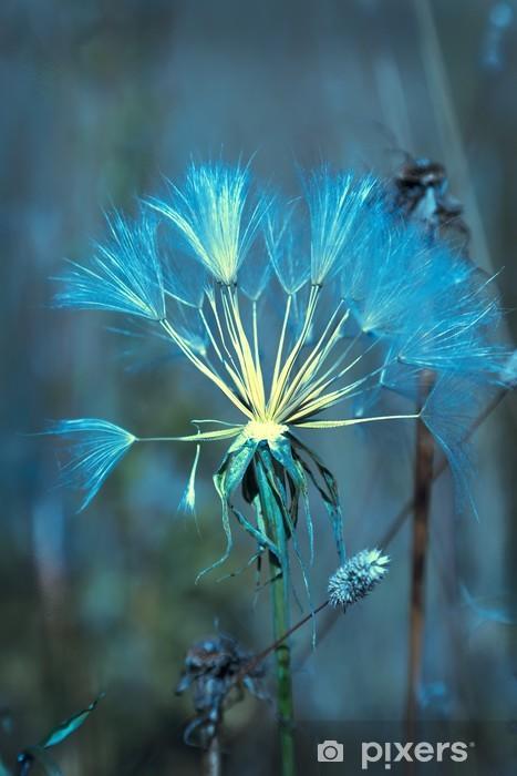 Naklejka Pixerstick Soft Blue Abstract Seed Dandelion - Kwiaty