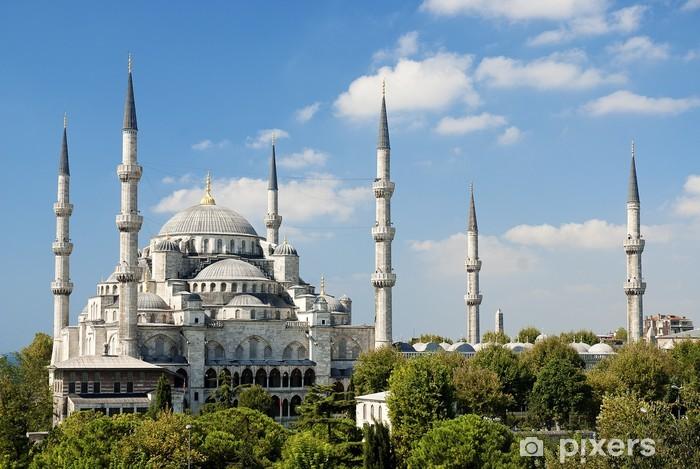 Vinylová fototapeta Sultan Ahmed mešita v Istanbulu Turecko - Vinylová fototapeta