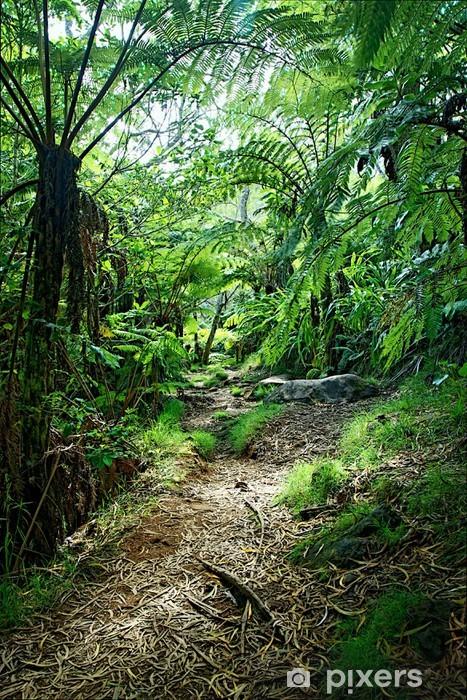 Sentier en forêt tropicale humide - Réunion Vinyl fototapet -