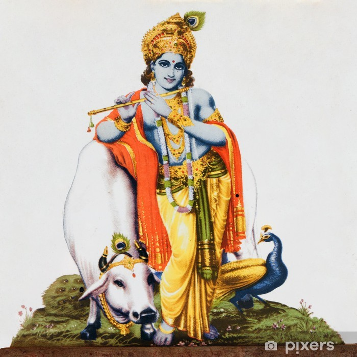 image of hindu god Krishna with cow, peacock , flute Vinyl Wall Mural - Styles