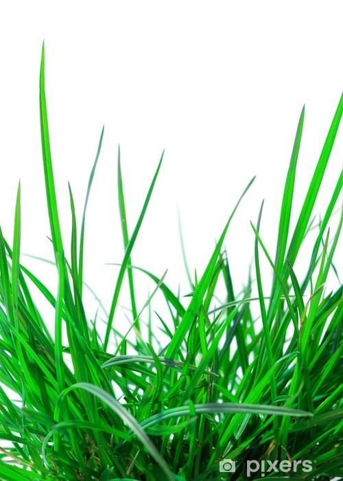 Naklejka Pixerstick Zielona trawa - Pory roku