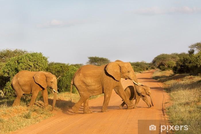 Vinyl Fotobehang Afrikaanse familie van de olifant die de weg in Tsavo, Kenia - Thema's