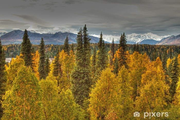 Fototapeta winylowa Jesień w Parku Narodowym Denali - Pory roku