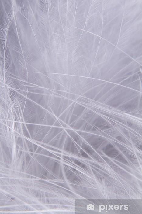 Naklejka Pixerstick Białe tło pióra - Pory roku