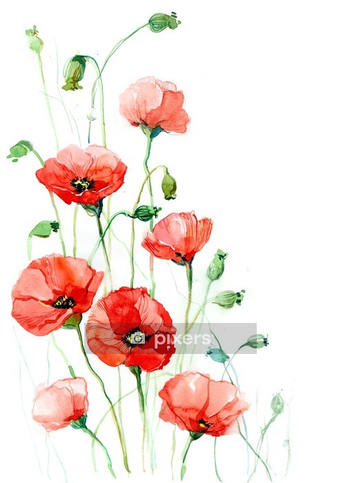 poppies (series C) Wall Decal -