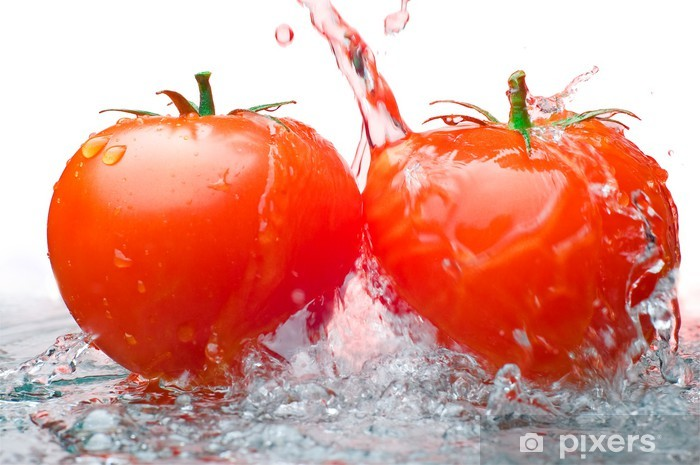 Papier peint vinyle Deux tomates et l'eau - Thèmes