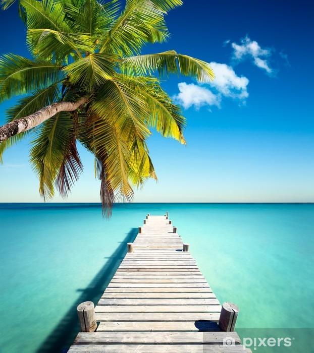 Fototapeta winylowa Plaża kokosowa - Palmy