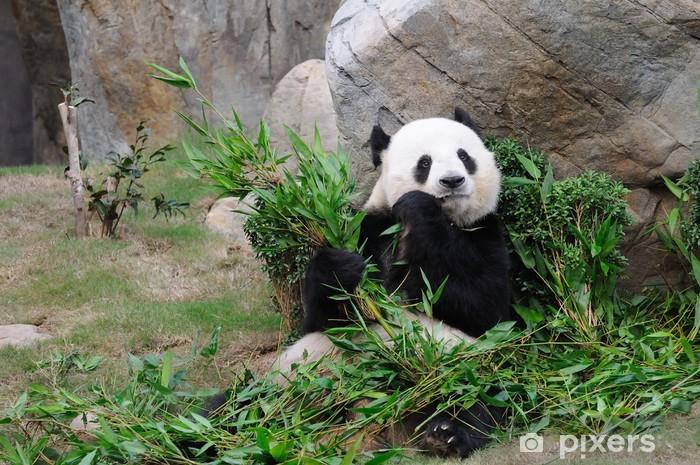Naklejka Pixerstick Panda wielka - Tematy