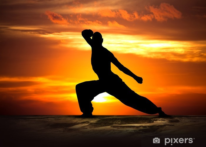 Naklejka Pixerstick Martial Arts Fitness at Sunset - Tematy