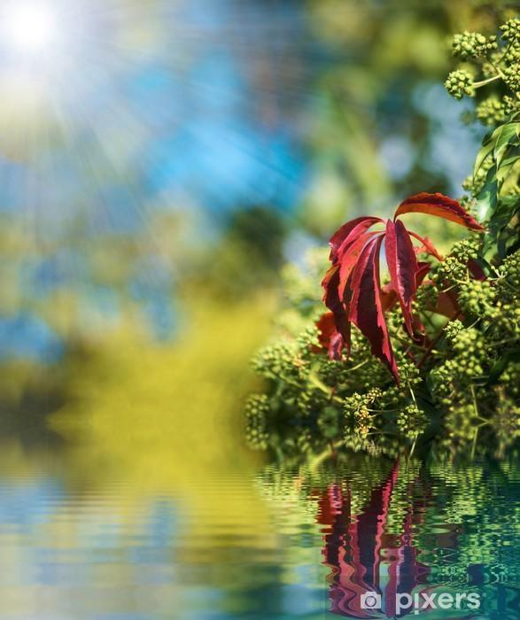 Vinyl-Fototapete Spiegeln sich im Wasser 2 - Pflanzen