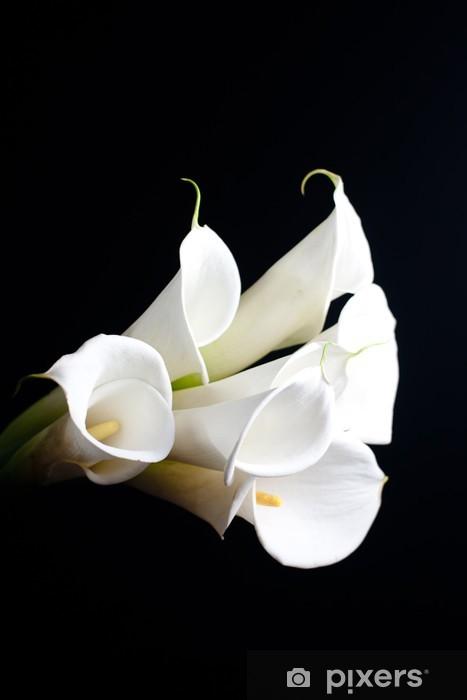 Naklejka Pixerstick Biała lilia Calla w czarnym tle - Pary