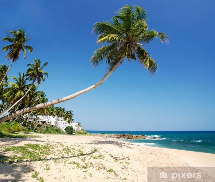 Poster Tropisches Paradies - Wasser