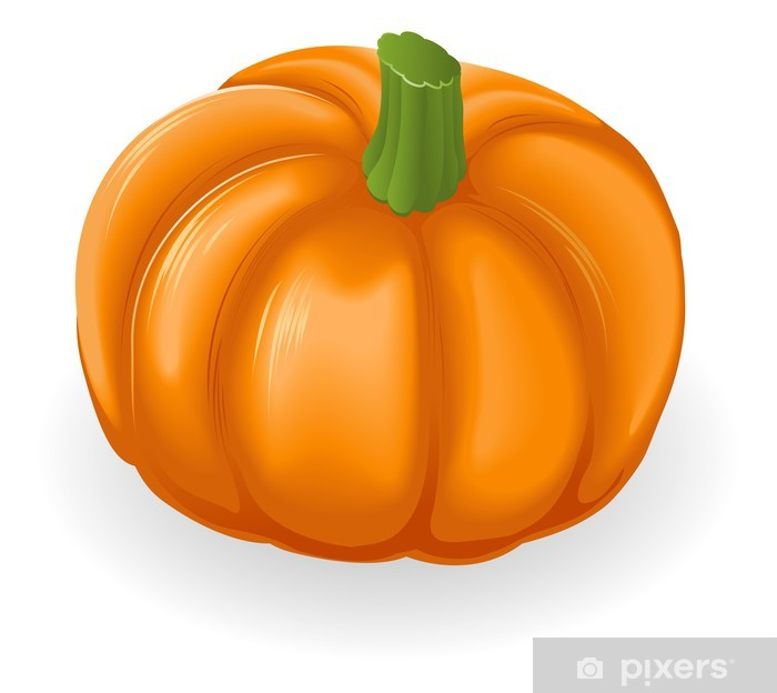 Nálepka Pixerstick Pumpkin ilustrace - Zelenina