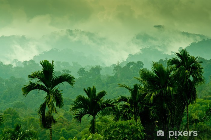 Papier peint vinyle Montagnes de Sumatra - Thèmes