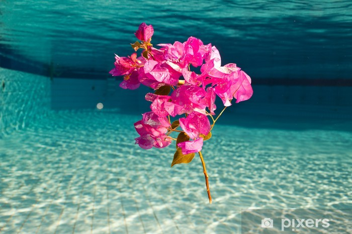 Carta da Parati in Vinile Un fiore sotto l'acqua - Fiori