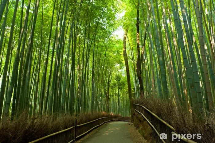 Pixerstick Sticker Bamboo grove - Stijlen