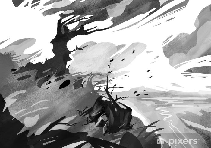 Papier peint vinyle Colline boisée avec des nuages brumeux foncé - Nature