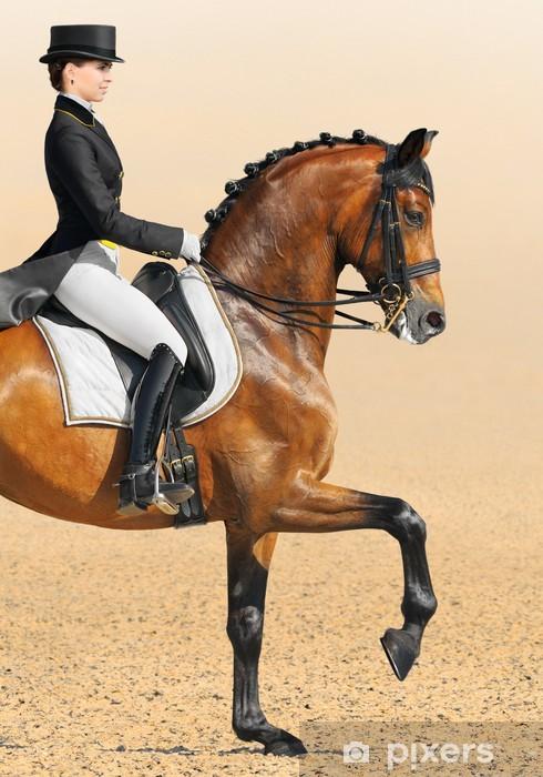 Mural de Parede em Vinil Equestrian sport - dressage, closeup - Desportos Individuais
