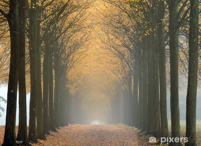 Pixerstick Aufkleber Nebel - Landwirtschaft