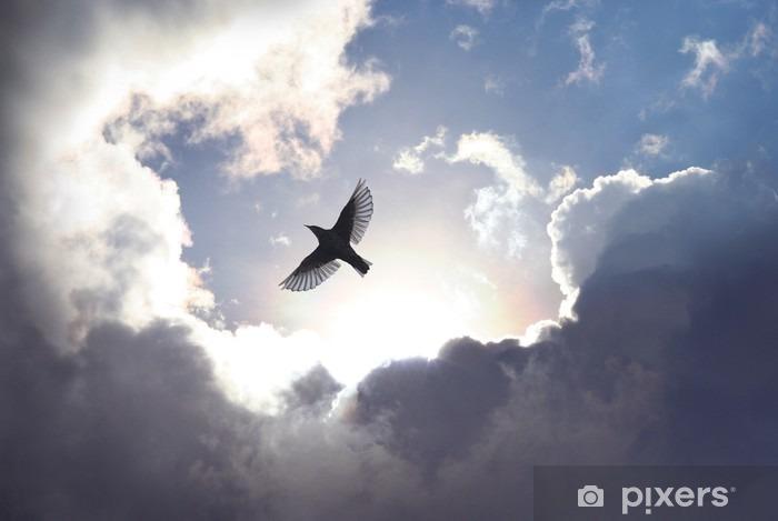 Carta da Parati in Vinile Uccello angelo in cielo - iStaging