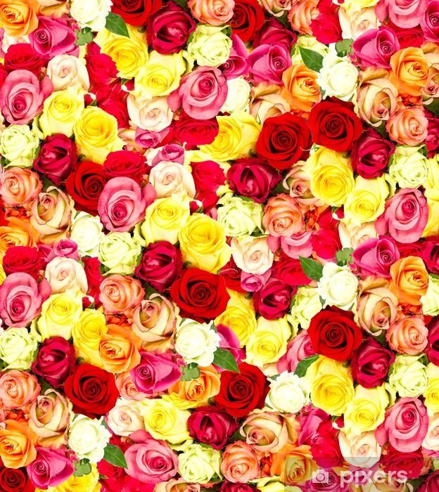 Vinilo Pixerstick Rosas Fondos De Escritorio De Flores De Colores