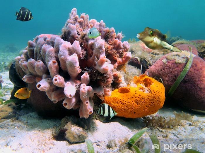 Fotomural Estándar Esponjas marinas y peces tropicales - Temas