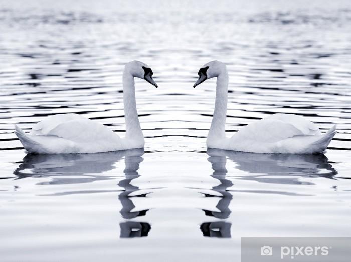 Naklejka Pixerstick Białe łabędzie - Łabędzie