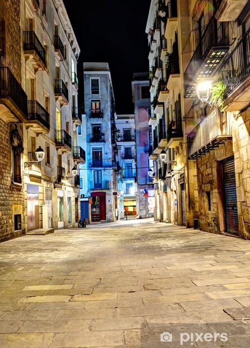 night scene in gothic quarter, Barcelona, Spain Pixerstick Sticker - Themes